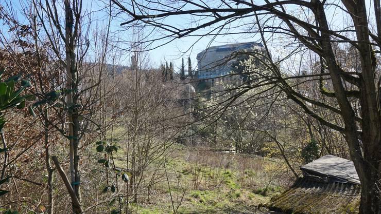 Das Schwinbach Süd - im Hintergrund der Goetheanum.