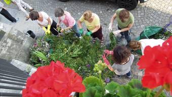 Schneiden, binden, stecken – und nach dem Maienzug kommt das grosse Aufräumen. Dafür brauchen die Blumenfrauen neue Helferinnen und Helfer.az-Archiv/ksc