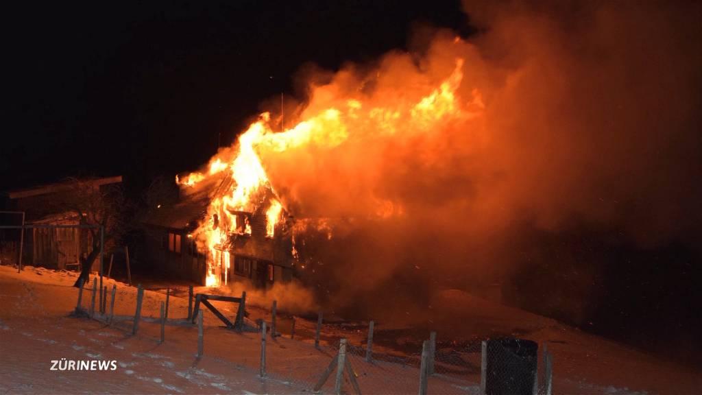 200 Schweine verbrennen in Hundwil (AR)