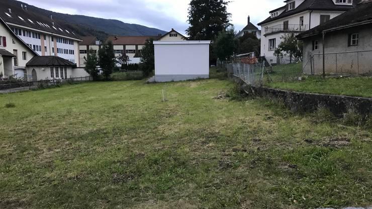 Auf diesem Wiesenstück hinter dem Thalhof soll künftig die Entsorgungsstelle für Welschenrohr eingerichtet werden.