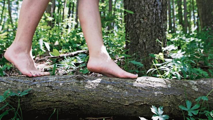 Auch über Baumstämme zu balancieren, könnte Teil des Barfusspfades werden.