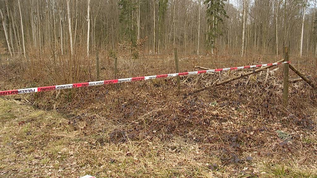 Orientierungslose 16-Jährige in Waldstück aufgegriffen