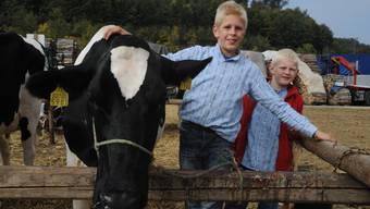 Viehschau Diegten