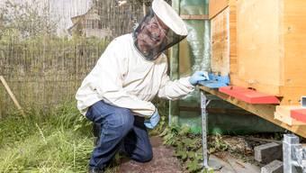 Der Imker Ernst Karbe schleudert in Unterengstringen Honig