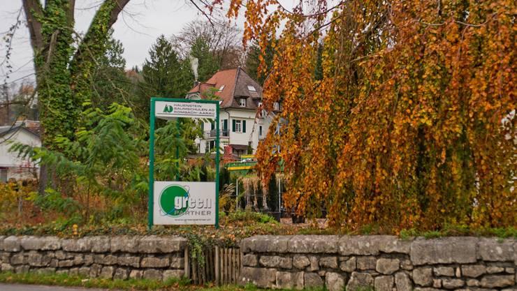 Die etappierte Überbauung des Baumschulareals wird auf Villa und alten Baumbestand Rücksicht nehmen.