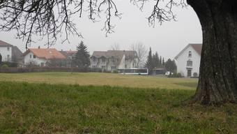 Auf dieser Parzelle soll das Alterszentrum Hintermatt im Weiler Kindhausen in Bergdietikon gebaut werden.