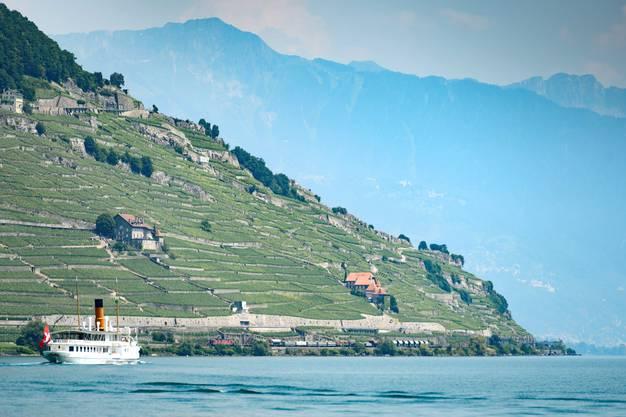 Der Genfersee bei Montreux.