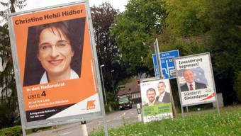 Irgendwo im Plakatwald über dem grünen Klee finden sich auch einige Kandidaten aus der Region.  tf