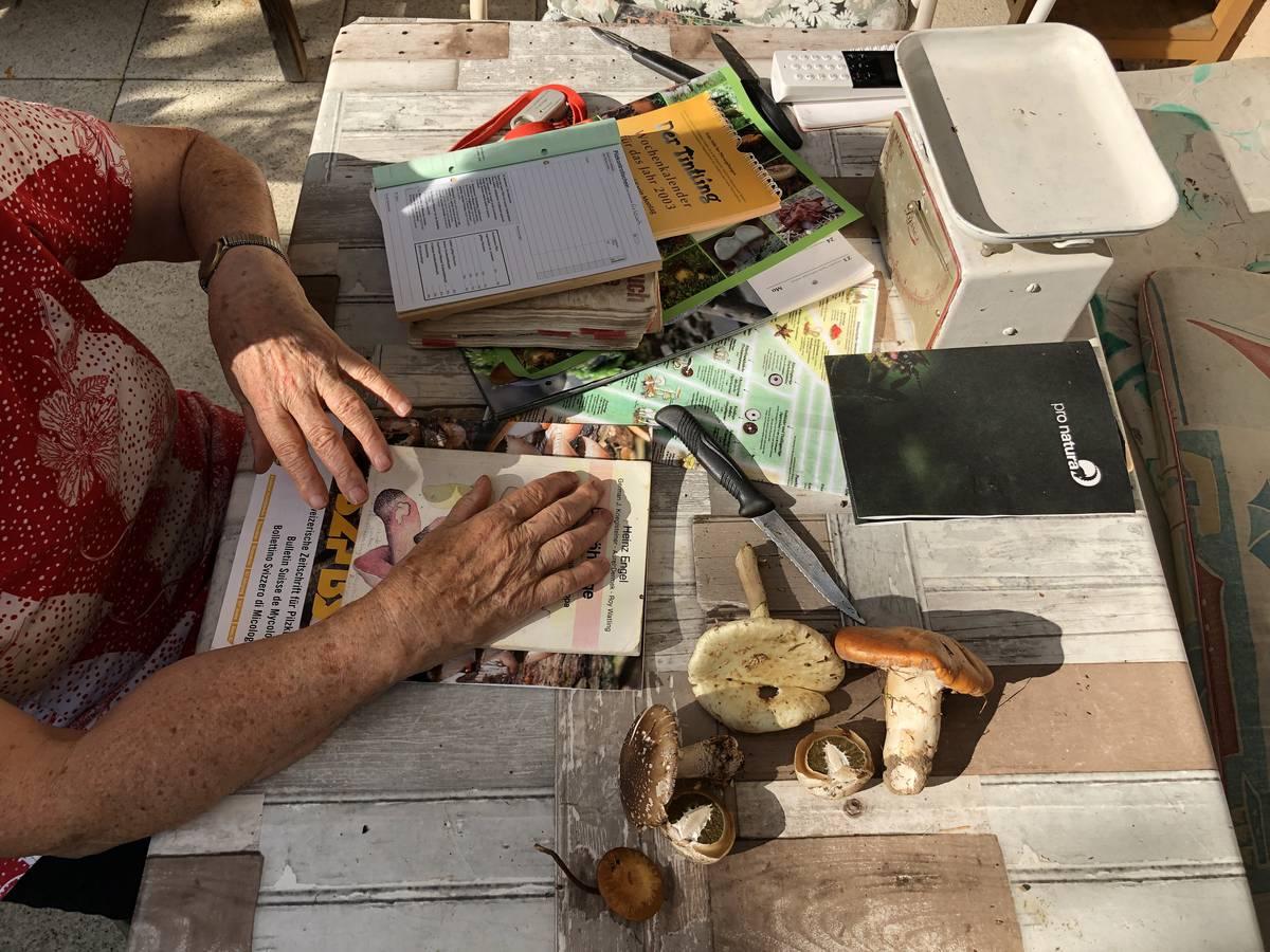 Täglich informiert sich Trudi Jäger in Büchern, Kalendern und Heften über Neuigkeiten rund um Pilze. (© FM1Today)