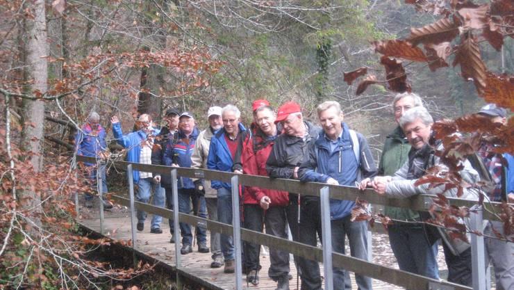 Brücke vom Waldweiher zum Lummembach