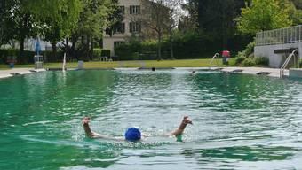 Das Schwimmerbecken weist normale Werte auf.