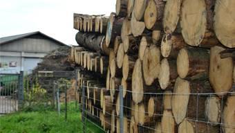 Der Borkenkäfer hat in den Fricktaler Wäldern grossen Schaden angerichtet – beim Möhliner Forstwerkhof liegt tonnenweise Käferholz.