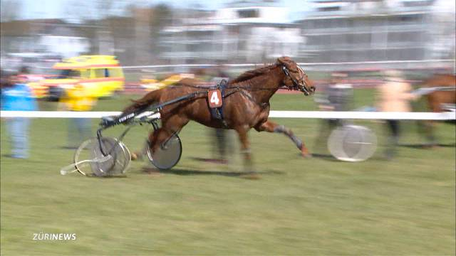 Grosses Wetten am Pferderennen in Fehraltorf