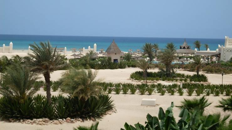 Auch das Kap Verde bei Afrika bietet sich an.