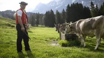 Mercosur-Abkommen: Landwirtschaft zeigt sich kompromissbereit.