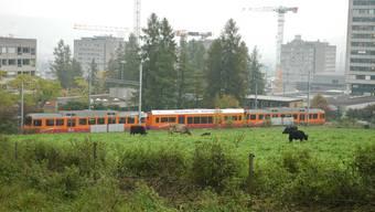 Eine Zugskomposition der Sihltal Zürich Üetliberg Bahn (SZU) (Archiv)