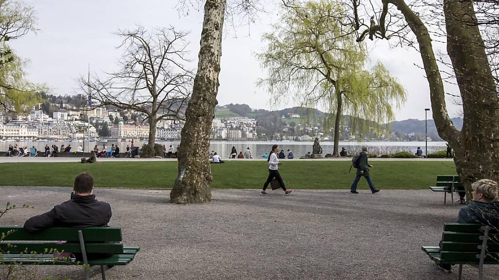 Handtaschendieb kurz nach Tat in Luzern festgenommen
