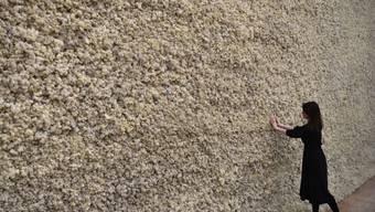 """Eine ganze Wand aus Rentiermoos: """"Moss Wall"""" aus dem Jahr 1994 ist eines der Werke des dänisch-isländischen Lichtkünstlers Ólafur Eliasson. Ihm widmet die Tate Modern in London eine Soloschau."""