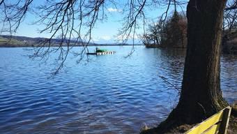 Künftig könnte der Hallwilersee nicht nur Erholungsgebiet für die Bevölkerung, sondern auch Trinkwasserlieferant sein.