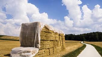 Ein Bauernkomitee bekämpft die Agrarinitiativen, über die am 23. September abgestimmt wird. Die Landwirte befürchten neue Vorschriften. (Archivbild)