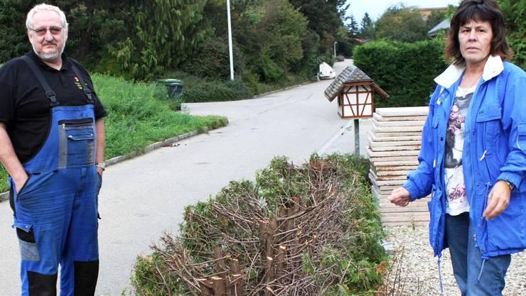 Die Thuja-Hecke ist ein Opfer des angeblichen Racheaktes der Gemeinde gegen die Krhuts, die sich gegen eine Strassenöffnung wehren.