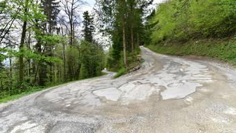 In schlechtem Zustand: Der letzte Abschnitt, der durch den Wald zum Bergrestaurant Blüemlismatt führenden Strasse soll asphaltiert werden.