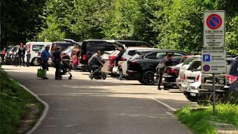 59 Parkplätze, doch an schönen Tagen ist auf dem Roggi-Parkplatz kaum ein freies Feld zu finden. Und Wildwuchs grassiert.