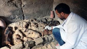 In einer Nekropole haben Archäologen in Ägypten mehr als 3000 Jahre alte Katzenmumien entdeckt.