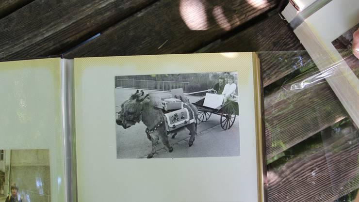 Nik Sax fährt die Erstklässler seit 30 Jahren an ihrem ersten Schultag mit dem Eselwagen zur Schule. Hier ein Foto der allerersten Fahrt, damals kam seine Tochter Yvonne zur Schule.
