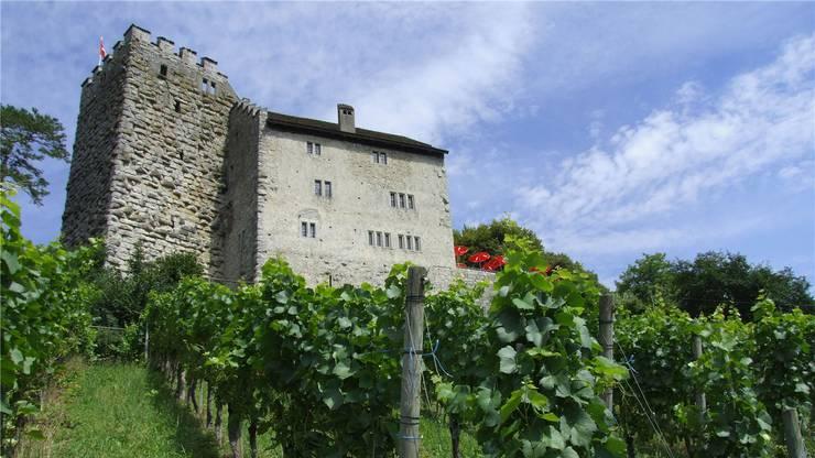 Der Kanton Aargau besitzt das Schloss Habsburg. Das Restaurant hat er seit dem Winter 2013/14 neu verpachtet.