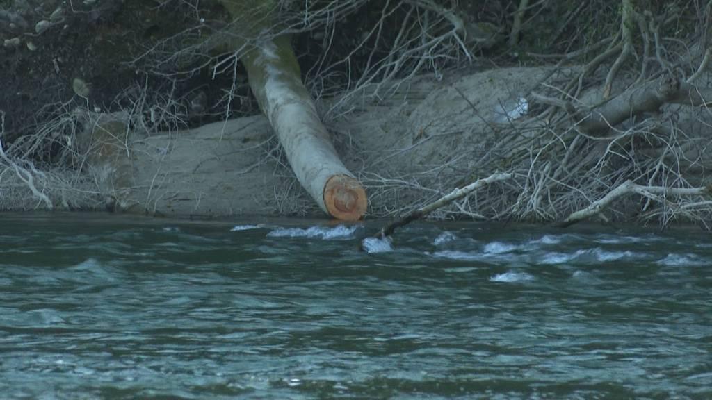 Tragischer Bootsunfall auf der Reuss