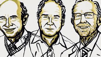 Harvey J. Alter, Michael Houghton und Charles M. Rice wurden für die Entdeckung des Hepatitis-C-Virus geehrt.