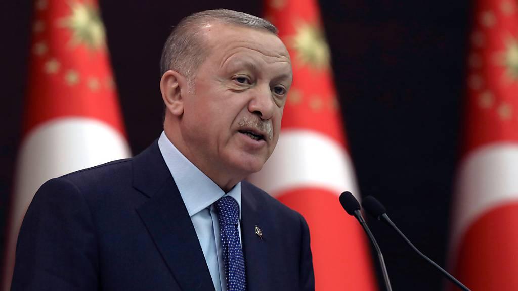 Erdogan: Konflikt in Ostukraine mit diplomatischen Methoden lösen