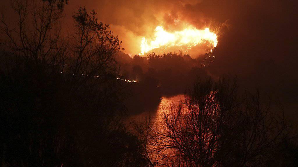 Südeuropa leidet unter einer Hitzewelle mit Temperaturen um 40 Grad. In vielen Ländern bekämpfen Feuerwehrleute gegen Waldbrände. (Bild vom 26. Juli von einem Waldbrand in Portugal)