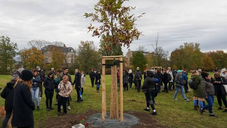 In Zwickau wurden zehn neue Bäume für die Opfer der NSU-Morde gepflant.