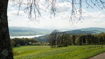 Blick vom Homberg ins Seetal mit Hallwiler- und Baldeggersee.