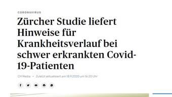 Der kritisierte Titel des Artikels wie er nun – nach der Beanstandung – neu daherkommt. (Screenshot)