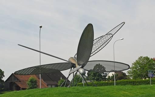 Libelle in Rickenbach