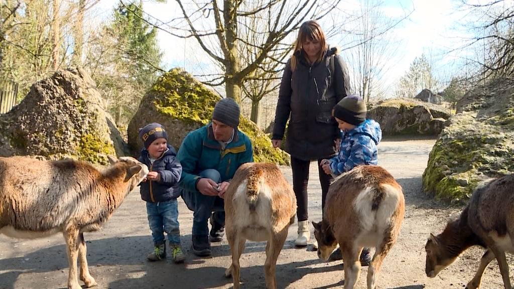 Familie im Schnee: Ausflug in den Tierpark