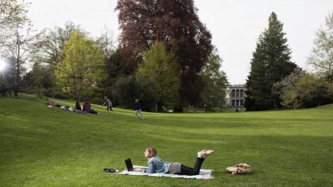 Die Autorin beim Schreiben dieses Textes im Rieterpark in Zürich. Sie hofft, dass sie nun öfters im Grünen arbeiten darf. Foto: Roland Schmid