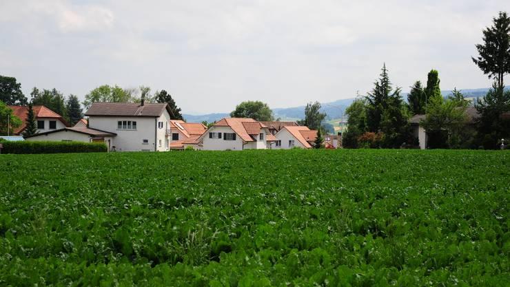Wenn aus der grünen Wiese wertvolles Bauland wird, macht der Besitzer einen grossen Gewinn.  dno/archiv