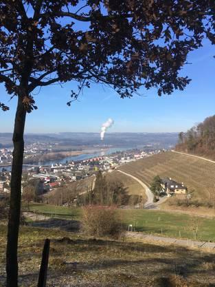 Waltraud Von Jancso / Bad Zurzach AG
