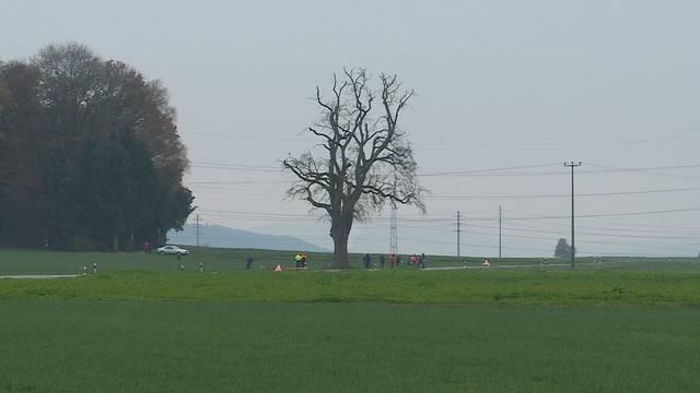 180-Jährige Linde aus Tegerfeld muss gefällt werden