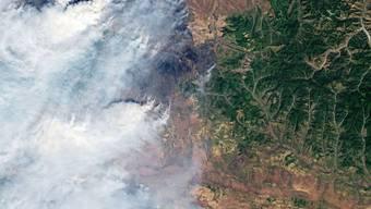 Am nördlichen Polarkreis brennt's wie selten zuvor: Nasa-Satellitenaufnahme eines Waldbrands in Sibirien. (Symbolbild)