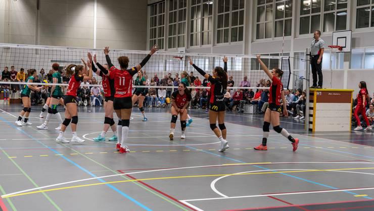 Volle Halle beim Derby gegen Volley Schönenwerd