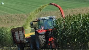 Bei der Aargauischen Landwirtschaftlichen Ausstellung wollen die Bauern 2013 in Lenzburg sich und ihre Arbeit präsentieren.Walter Schwager