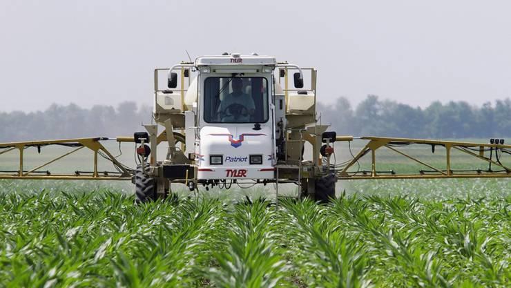 Glyphosat ist das weltweit am meisten eingesetzte Herbizid. In den USA werden jährlich über 100'000 Tonnen verbraucht, vor allem im Soja- und Maisanbau. In der Schweiz sind es schätzungsweise 300 Tonnen. (Archiv)