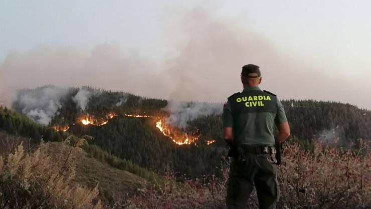 Ein Waldbrand auf der spanischen Ferieninsel Gran Canaria hat bereits eine Fläche von über 1500 Hektar verwüstet.