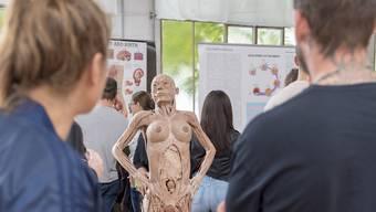 """Die Ausstellung """"Bodies Exhibition"""", hier bei ihrer Ankunft in Bern, wurde in Lausanne verboten."""