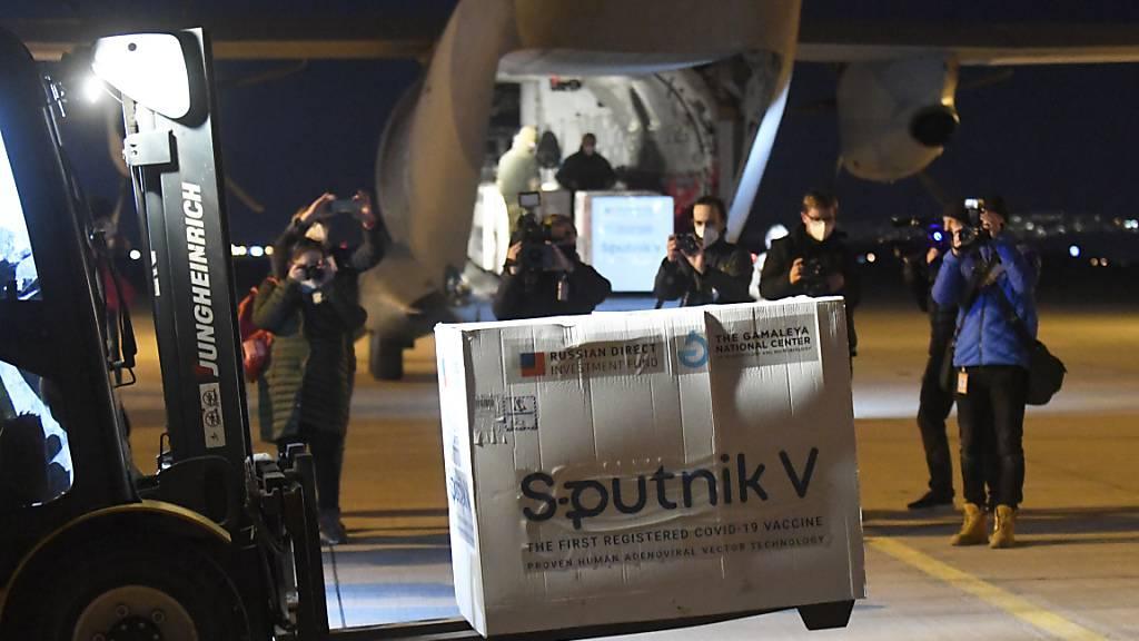 ARCHIV - Ein Gabelstapler transportiert eine Kiste mit Dosen des russischen Corona-Impfstoffs Sputnik V auf dem Flughafen Kosice. Foto: Frantisek Iván/TASR/AP/dpa